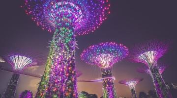 Bitcoin Singapur Regulierung