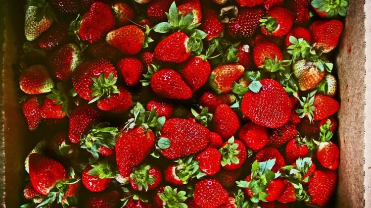 bitcoin russland erdbeeren