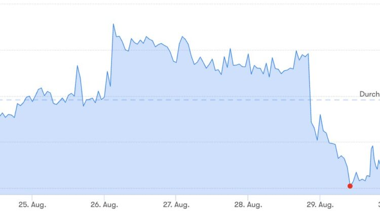 Bitcoin-Preis: Manchmal kann der Krypto-Markt gnadenlos sein. Der Wert von Bitcoin kann sehr schnell steigen oder fallen. Letzten Mittwoch verlor Bitcoin in nur 30 Minuten mehr als sechshundert Euro.