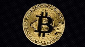 Bitcoin auf Rekordniveau: Steht ein neuer Crash an?
