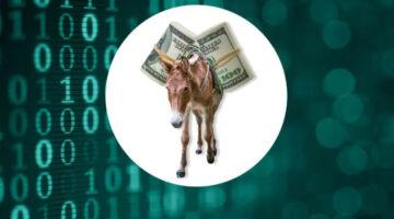 Money Mules (Bildquelle: SKP)
